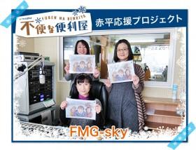 FMG-sky
